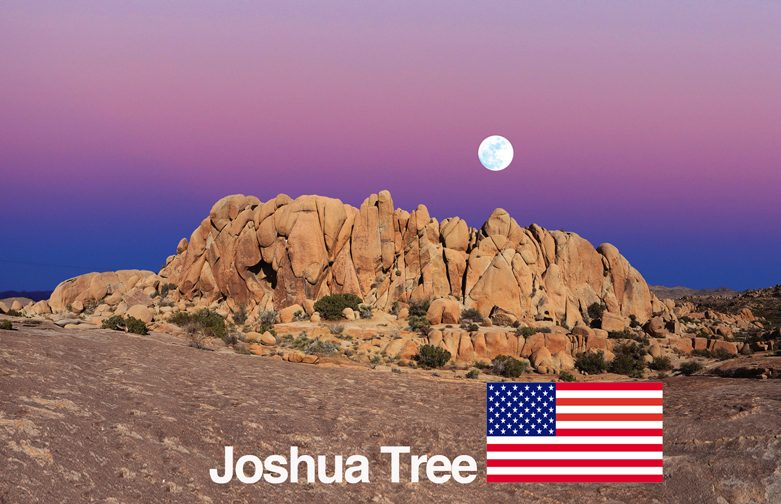 Joshua Tree – CA